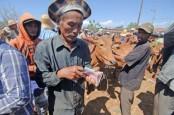 Dana Kurban untuk Bantu Korban Pandemi Corona