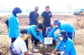 Pemakaman Islam Al Azhar Potong 59 Hewan Kurban