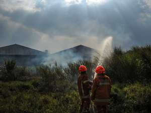 Kebakaran Lahan di Jawa Barat Disebabkan Cuaca Panas Dari Musim Kemarau