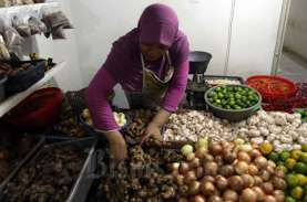 Mengenal Herbal Immunomodulator Asli Indonesia yang…