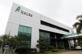 Kalbe Farma Klaim Jadi Pelopor Imunomodulator Herbal…