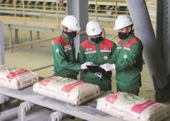 Pangsa Pasar Meningkat, Semen Baturaja Makin Dominan di Sumbagsel