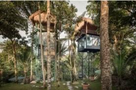 Hotel di Bali Ini, Tawarkan Konsep Rumah Pohon Setinggi…
