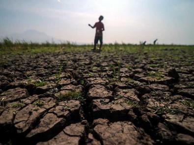 BMKG Peringatkan Potensi Kekeringan Meteorologis di Sejumlah Wilayah Indonesia