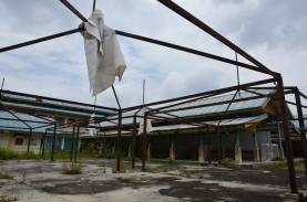 Ini Penyebab Ekonomi Riau Kuartal Kedua 2020 Turun…