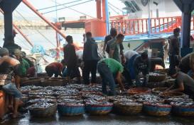 KKP Gelontorkan Rp474,9 Miliar untuk Pemulihan Sektor Perikanan