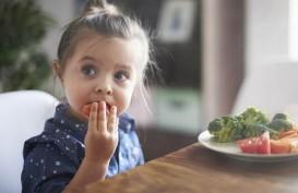 Simak Tips Mengajari Anak Pilih Makanan Sehat