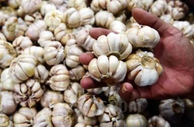 Jatim Produksi 2.314 Ton Bawang Putih