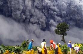 Dahsyat! Ini Foto Erupsi Sinabung Terlihat Gulung-menggulung