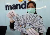 Karyawati bank menata uang dollar di kantor cabang PT Bank Mandiri Tbk. di Jakarta, Rabu (22/4/2020). Bisnis/Dedi Gunawan