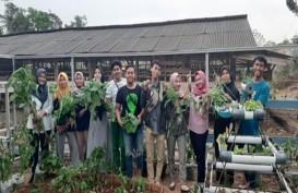 Pria Ini Sukses Jadikan Bisnis Pertanian Naik Kelas Melalui Teman Berkebun