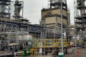 Historia Bisnis: Ekspansi Group Brasali di Sektor Petrokimia