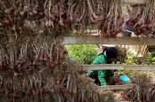 Harga Bawang Merah Turun, Petani Menilai Masih Stabil