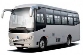 Pak Jokowi, Bus Wisata mau Kolaps, Tolong Perpanjang…