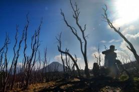 Pendaki Gunung Didorong Terapkan Protokol Kesehatan…