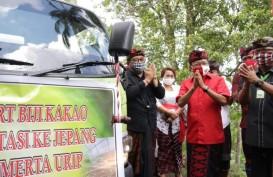 Bali Ekspor 10 Ton Kakao Fermentasi Asal Jembrana ke Jepang