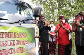 Bali Ekspor 10 Ton Kakao Fermentasi Asal Jembrana…