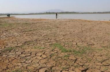 Rawan Bencana, Pemerintah Perlu Atur Manajemen Risiko dan Asuransi Pertanian