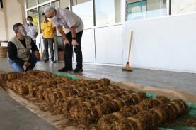 Ganjar Cek Kesanggupan Industri Serap Tembakau Petani