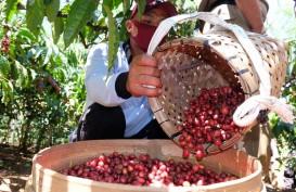 Nilai Ekspor Komoditas Pertanian Sulteng Masih Rendah