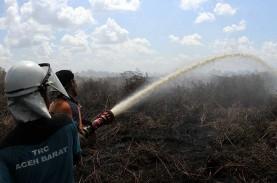 Pakar Ingatkan Pembakaran Lahan oleh Masyarakat Berisiko…
