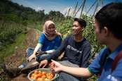 Agro Puspiptek Hadirkan Wisata Pertanian di Tangerang Selatan