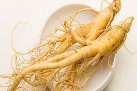 4 Herbal Peningkat Sistem Imun