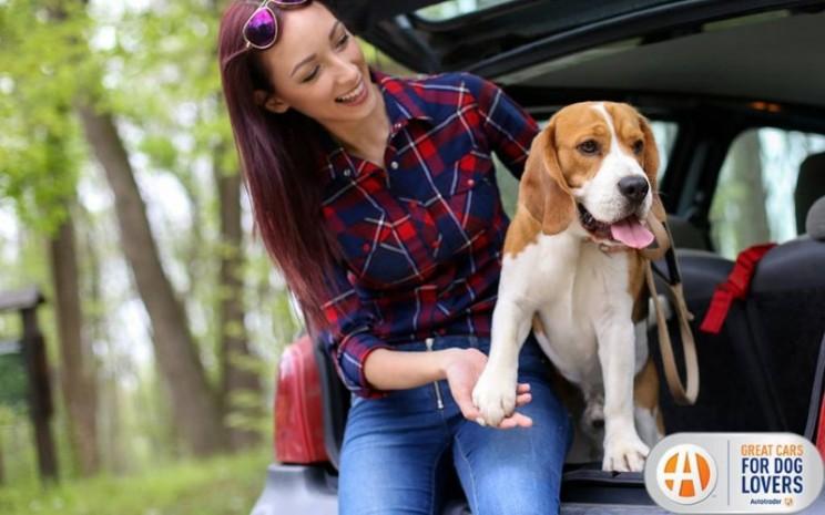 Tidak semua mobil didesain untuk memberikan keramahan pada anjing piaraan.  - Autotrader\\\'s