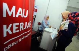 50.000 Orang Ikut Bursa Lowongan Kerja Online 2020