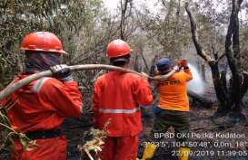 Karhutla Juli - Agustus: 250 Hektare Lahan di Sumsel Terbakar