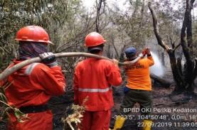 Karhutla Juli - Agustus: 250 Hektare Lahan di Sumsel…