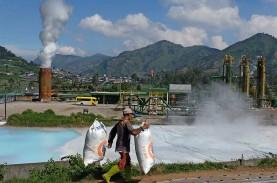 Selandia Baru Dukung Penguatan Industri Geothermal…