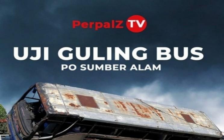 Perpalz TV