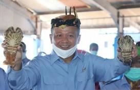 Menteri KKP Edhy Prabowo Terkena Covid-19? Politisi Gerindra Bungkam
