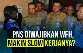 PNS Diwajibkan WFH, Makin Slow Kerjanya?