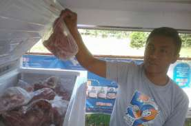 RI Pastikan Kuota Impor Daging Kerbau India Tidak…