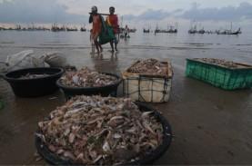 Bangka Belitung Bakal Bangun 20 Pelabuhan Perikanan…