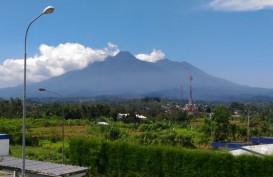Gunung Gede Viral Karena Pendaki Membludak, Ini Kata Asosiasi Pemandu Gunung Indonesia