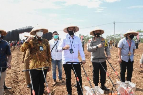 Bea Cukai Dukung Peningkatan Ekonomi Kecil dan Ketahanan Pangan di Tengah Pandemi