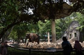 PSBB Jakarta, Seluruh Taman Tutup Sementara mulai…