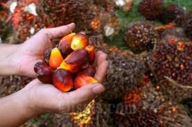Harga TBS Sawit di Riau Naik Tipis Jadi Rp2,048,64…