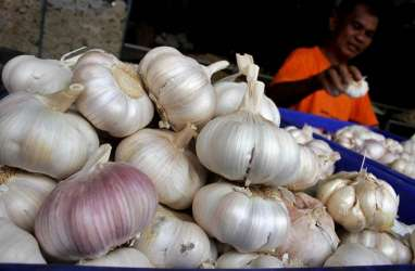 Ketiadaan RIPH Impor Bawang Putih Harusnya Tak Jadi Soal