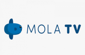 Mola TV Raih 1 Juta Pelanggan per Agustus 2020