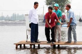 Wabah AHPND Serang Tambak Udang, KKP Ambil 10 Langkah
