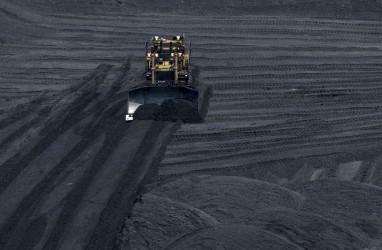 Melawan Senja Kala Industri Batu Bara