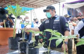 Pemprov Sumsel Bakal Alokasikan APBD 2021 untuk Bantuan Biaya Sertifikasi Tanah
