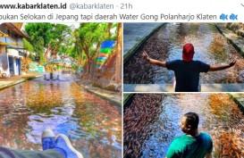 Sensasi Jutaan Ikan di Selokan Irigasi, hanya Ada di Klaten