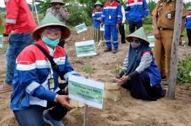 Pertamina Dukung Pelestarian Burung Endemik Makassar