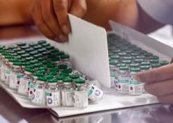 Bio Farma Disebut Mampu Produksi 350 Juta Vaksin pada 2021