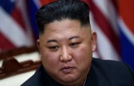 HUT Korea Utara Ke-72, Jokowi Kirim Bunga dan Ucapkan Selamat